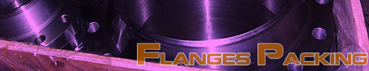 flanges packing technology